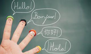 Language Checks
