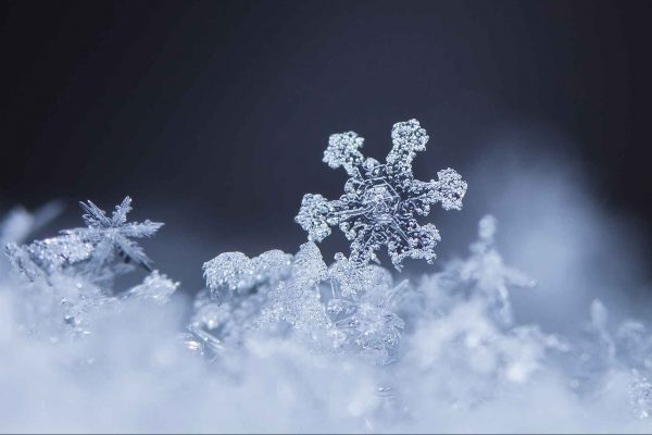 Alun Rees explains why the dental snowflake nickname isnt helpful