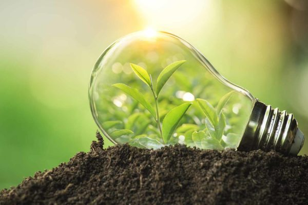 Maya Samuel explains how dental teams and practices can play their part in a more sustainable future