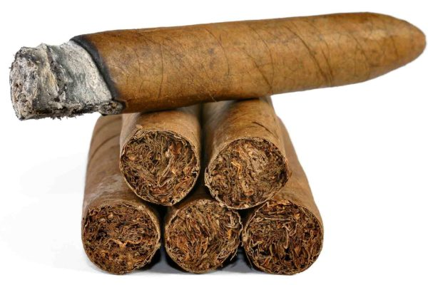 Cigar smokers have increased their tobacco use during the pandemic – despite saying they intended to quit over health fears linked to COVID-19