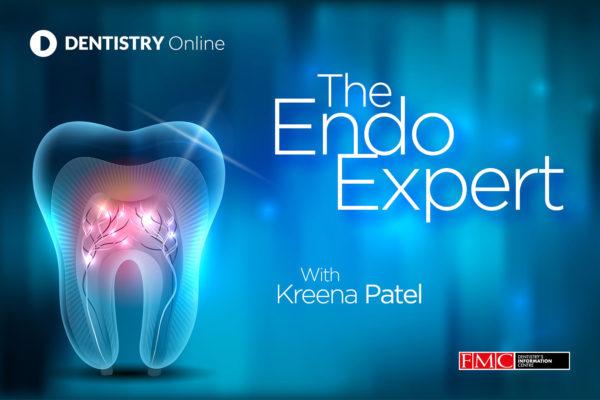 the endo expert