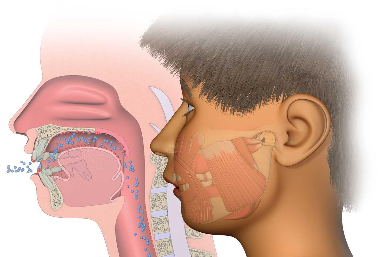 myofunctional orthodontics